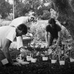 JL's-planting-crew