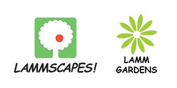 Lammscapes!